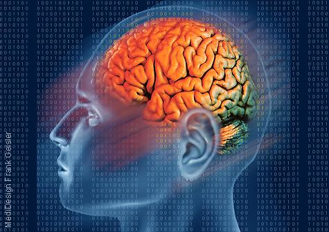 Illustration Hirnforschung, Forschung Erforschung ZNS Gehirn Hirn