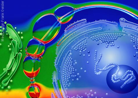 Medical Art Zelle Zellforschung der Biologie und Pharmazie