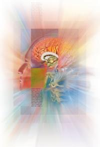 Medical Art Bild ZNS Neurologie Kopf